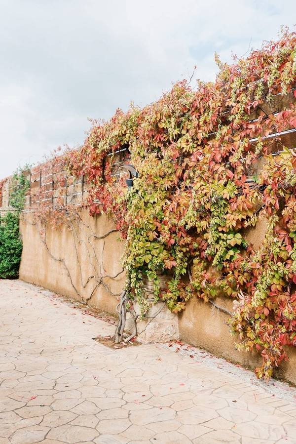 wine museum in Greece